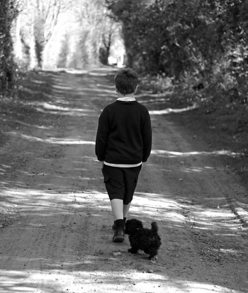 قدمزدن پسر با سگش