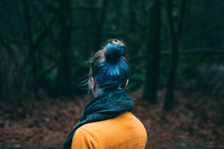 پیاده در جنگل