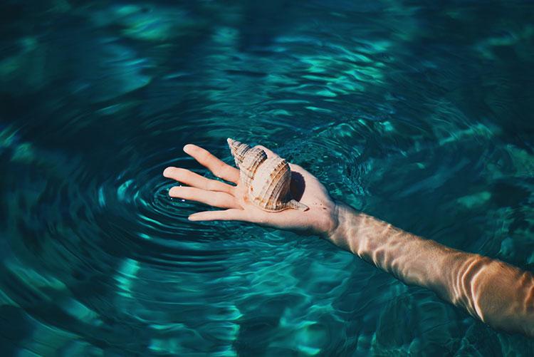 صدف در کف دست
