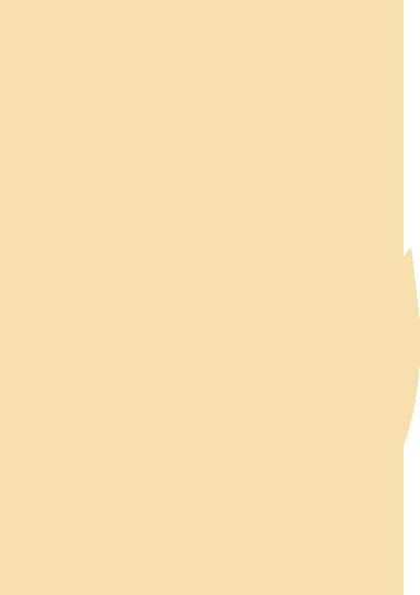۴ عنصر خویش - آتش