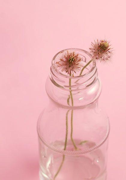 گلدان ساده