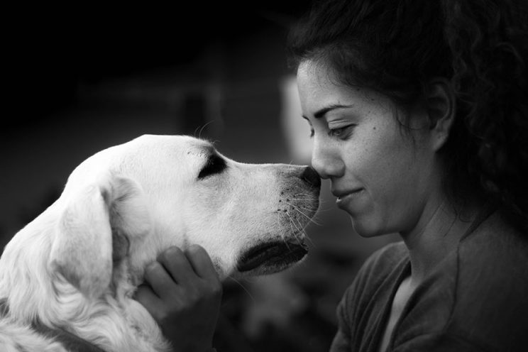 دوستی انسان و سگ
